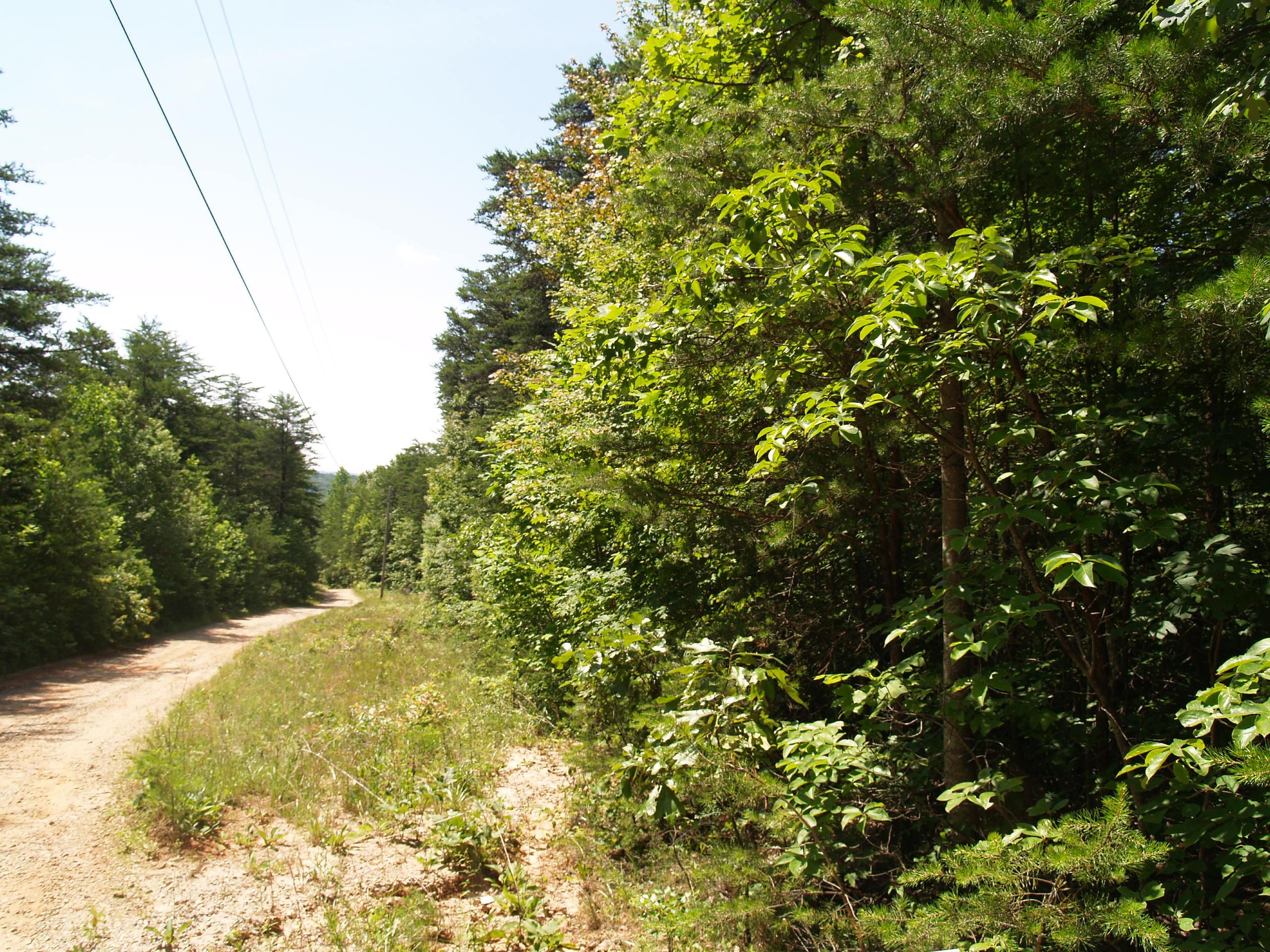 +/- 3.08 Acres Residential Lot: Mountain Ridge Estates