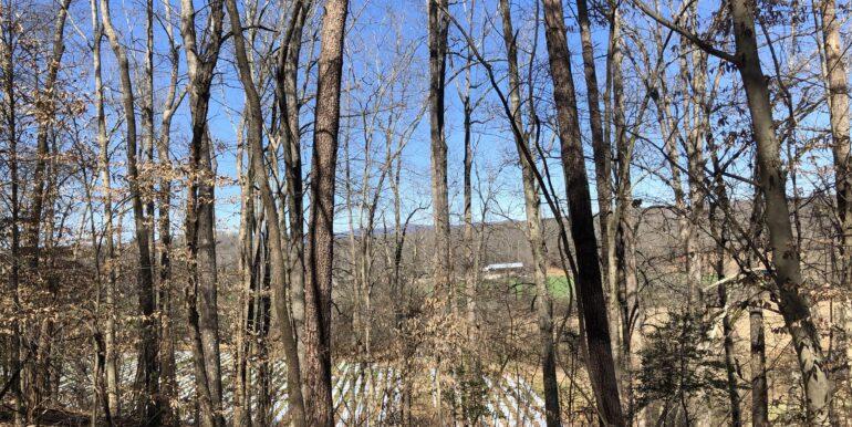 Ridge Top Field View