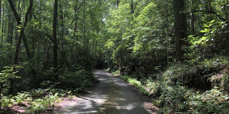 Castle Creek Road